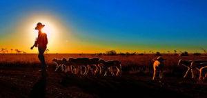 Radford-Chisholm_Australia_NatureLandscape